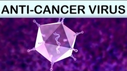 Anti Cancer Medical Animation ColoAd1